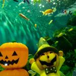 水の中もハロウィーン<br>しながわ水族館