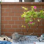庭の万年塀を塗りました!<br>超簡単レンガ風塗装